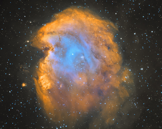 NGC 2174, the Monkey Head nebula